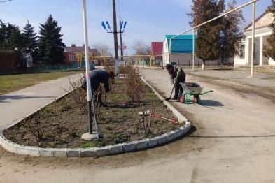Как только позволила погода в станице Камышеватской приступили к наведению чистоты и порядка