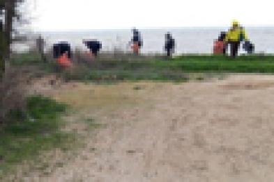 Более 8 тысяч жителей Ейского района приняли участие в генеральной уборке своей малой Родины