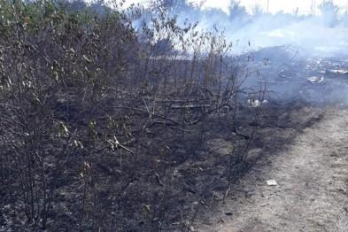 Сегодня на территории СНТ «Весна» был ликвидирован очаг возгорания