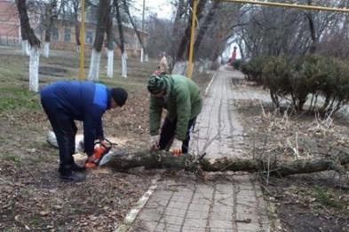 В Кухаривском сельском поселении продолжаются работы по благоустройству территорий населенных пунктов