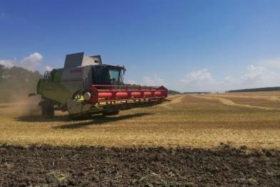 Ейские аграрии продолжают усердно трудиться в полях