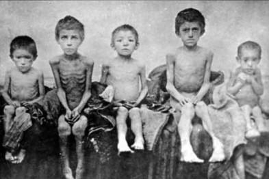 О голоде в СССР в 1932-1933 годы. Анализ причин