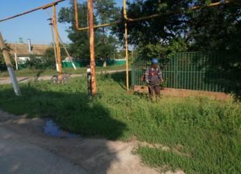 Продолжаются работы по наведению санитарного порядка на территории сельских поселений Ейского района