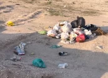 Депутат райсовета Роман Бублик принял «вызов» по уборке берега от мусора