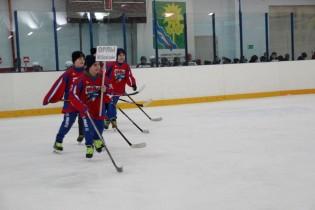 В Ейске продолжаются краевые соревнования юных хоккеистов «Золотая шайба» имени А.В.Тарасова