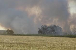 В Ейске горит заброшенный участок