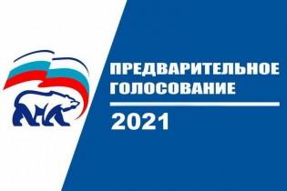 Результаты предварительного голосования по списку по выборам кандидатов в Государственную Думу от партии Единая Россия